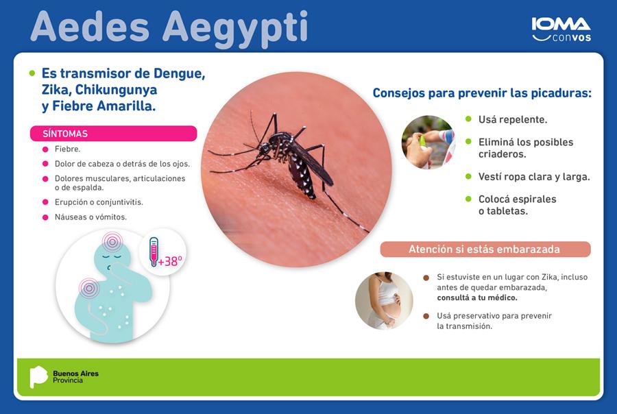 Infografía Dengue, Zika y Chikunguya
